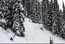 Photo credit: Revelstoke Mountain Resort