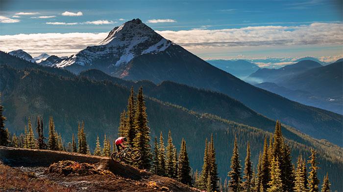 Alpine and cross-country biking